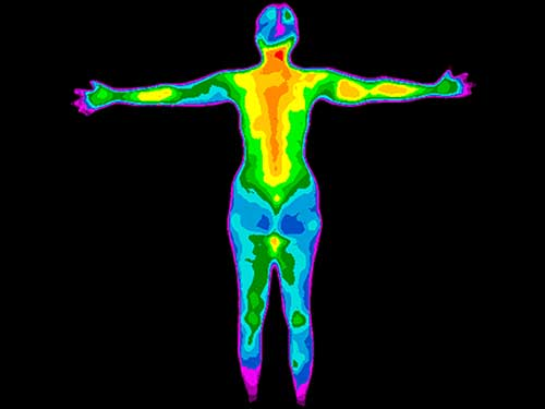 Thermal Image Full Body Screening